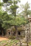 Templo del som de TA en Angkor Imágenes de archivo libres de regalías