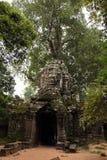 Templo del som de TA en Angkor Camboya Fotos de archivo libres de regalías