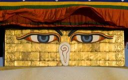 templo do boudhanath Imagens de Stock