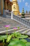 Templo do fnd de Flowerses Fotos de Stock Royalty Free