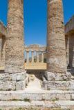 Templo do grego de Segesta Foto de Stock