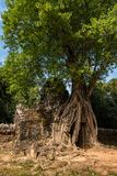 Templo do som de Ta no complexo de Angkor Wat, Camboja, ?sia foto de stock