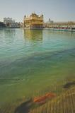 Templo dourado, Amritsar Foto de Stock