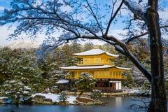 Templo dourado do pavilhão de Kinkakuji com neve Imagem de Stock