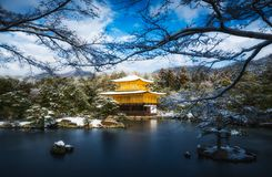 Templo dourado do pavilhão de Kinkakuji com neve Foto de Stock