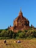 Templo en Bagan con los granjeros Imagen de archivo libre de regalías