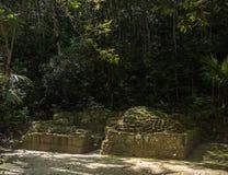 Templo en el parque de Tikal Objeto de visita turístico de excursión en Guatemala con los templos mayas y las ruinas del ceremoni foto de archivo