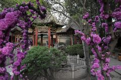 Templo halal de Xi'an imagen de archivo