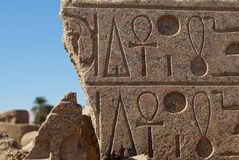 Templo Hierogplyphics de Karnak Fotografia de Stock