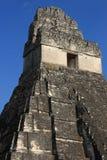 Templo I, parque de Tikal (Peten) Guatemala Imágenes de archivo libres de regalías