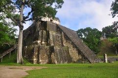 Templo II, Gran Plaza på Tikal, Guatemala Arkivbild