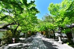 Templo japonês com verde fresco imagens de stock royalty free