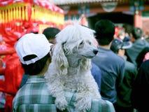 Templo justo, Celebratioin del Año Nuevo chino Fotografía de archivo