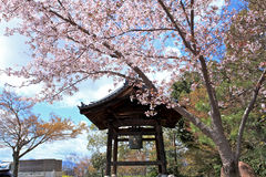 Templo Kyoto Japão de Kodaiji Fotografia de Stock