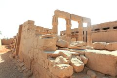 Templo Luxor - Egito fotografia de stock royalty free