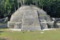 Templo maia Fotos de Stock