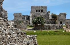 Templo maya en Tulum, México Foto de archivo