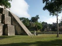 Templo maya por el césped de la hierba Fotos de archivo