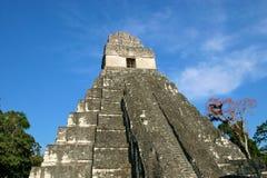 Templo maya Tikal, Guatemala Imagen de archivo libre de regalías