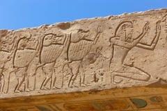 Templo Medinet Habu em Luxor fotografia de stock royalty free