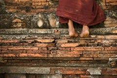 Templo que sube del monje budista del novato Foto de archivo libre de regalías