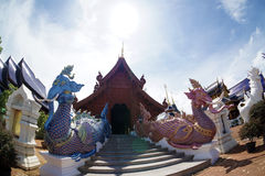 Templo real de la flora (ratchaphreuk) en Chiang Mai, Tailandia Fotos de archivo