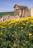 Templo romano Túnez Imágenes de archivo libres de regalías