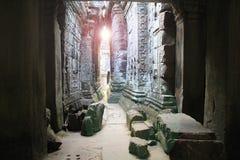 Templo TA Phrom en Camboya Fotografía de archivo