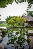 Templo, tejado, sol, pájaros, hermosos, país, flores, amarillas Fotos de archivo