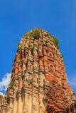 Templo viejo de Ayuthaya Imagenes de archivo
