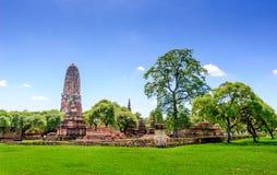 Templo viejo de Buda en Ayutthaya, Tailandia Fotografía de archivo libre de regalías
