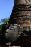Templo Wat Mahathat Ayutthaya de Buda de la cabeza Fotos de archivo