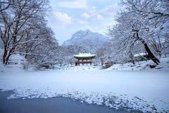 Templo y nieve que cae, montaña de Baekyangsa de Naejangsan en invierno con nieve Fotos de archivo libres de regalías