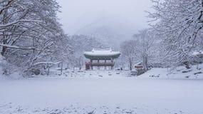 Templo y nieve que cae, montaña en invierno con nieve, montaña famosa de Baekyangsa de Naejangsan en Corea Paisaje del invierno Fotos de archivo libres de regalías