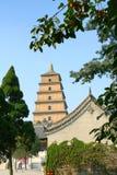 Templo y stupa Fotografía de archivo libre de regalías