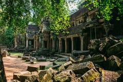Templos Angkor Wat en Camboya, TA Prohm, Siem Reap fotografía de archivo