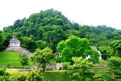 Templos antiguos del maya de Palenque, México Fotografía de archivo libre de regalías