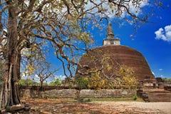 Templos de Sri Lanka Foto de Stock Royalty Free