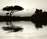 Templos en la puesta del sol Imagenes de archivo