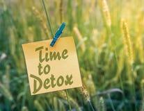 Tempo à desintoxicação