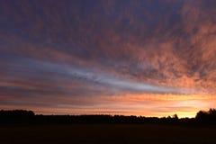 Tempo antes da luz do alvorecer do nascer do sol no céu acima da floresta Foto de Stock