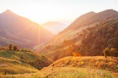 Tempo bonito Paisagem cênico brilhante e colorida A luz solar dourada brilha para baixo em torno das montanhas e dos campos de al imagens de stock royalty free