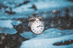 Tempo congelado Um pulso de disparo em um gelo ao lado da água Situação extrema do tempo Neve que cai em um pulso de disparo em u imagens de stock royalty free