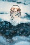 Tempo congelado Um pulso de disparo em um gelo ao lado da água Situação extrema do tempo Neve que cai em um pulso de disparo em u fotografia de stock