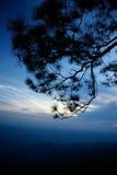 Tempo crepuscolare al parco nazionale di Phukradueng Fotografie Stock