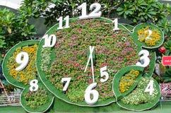Tempo da flor Foto de Stock