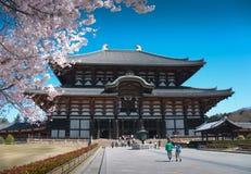 Tempo da flor de cereja em Japão Imagens de Stock