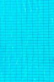 Tempo da natação Fotos de Stock Royalty Free