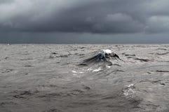 Tempo da tempestade no oceano foto de stock