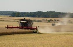 Tempo de colheita Imagens de Stock